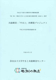 H29実施報告書表紙.jpg